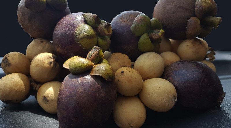 10 Interesting Facts about the Mangosteen Fruit