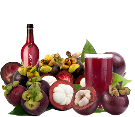 Mangoxan™ Mangosteen Juice Supplier